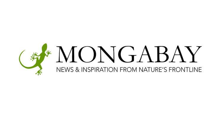 Resultado de imagen para logo mongabay